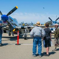 Vintage Warbirds on display